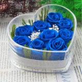 고급 아크릴 심혼 모양 아름다운 로즈 꽃 상자