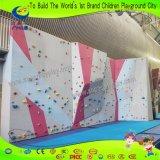 Innenkinder importierte kletternde Verdrahtungs-Felsen-Kletternwand