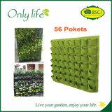 Onlylife sentía el plantador colgante verde grande del plantador vertical económico de la pared