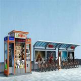 Het moderne Aluminium Carport van de Kleur van de Verscheidenheid van het Ontwerp voor Verkoop