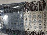 AC110V impermeabilizzano la pubblicità del modulo dell'iniezione della lampadina LED della casella