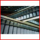 Im Freien/Innenrolltreppe mit guter Qualität für großes Passagier-Höhenruder