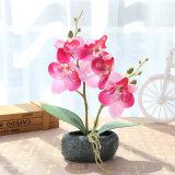 Новый стиль Декор дома две ветви Шелкового Phalaenopsis Цветы искусственные цветы