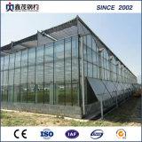 식물성 설치를 위한 플레스틱 필름 태양 온실