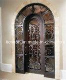 As portas da rua conservadas em estoque das portas do ferro feito escolhem portas de entrada exteriores