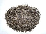 Jasmin-grüner Tee (EU-Standard)