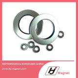 N35 de Zn Met een laag bedekte Magneten van de Ring van Permannt NdFeB van het Neodymium met Super Sterk