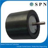 De Isotrope Ringen Multipolemagnet van het ferriet voor het Stappen Motor