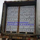 New Grop Shandong Origin Air Dry Ginger
