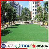 Hierba sintetizada de los varios estilos del diseño del campo de deporte para la pared