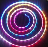IP20/IP65/IP67/IP68 Flexible Strip Light LED SMD5050 violet