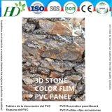 2017防水Plastic Panel De PVC Ceilingおよび壁パネル(RN195)