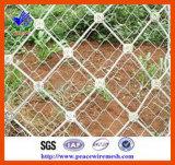 ISO900 의 SGS Rockfall 보호 그물세공 (ROCKFALL001)