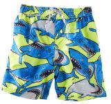 2014 Mens et les enfants de l'été Longueur genou Shark Swim Trunks Shorts
