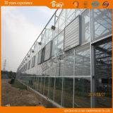 高品質の長い寿命ガラスの温室