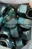 Écrous de blocage en nylon M12 de garniture intérieure