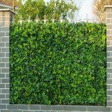 Barriera artificiale del Boxwood esterno poco costoso delle barriere della rete fissa del giardino