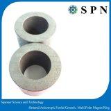 Permanent Ferriet Magne/de Ceramische Gesinterde Ringen van de Magneet voor Motor