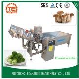 Producto de limpieza de discos vegetal certificado Ce y el lavarse por la lavadora de Ozone