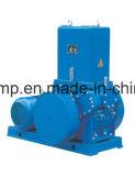 Pompe de vide de piston pour l'enduit industriel