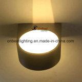 Buon indicatore luminoso chiaro della parete di Updown LED 10W LED di prezzi in IP65