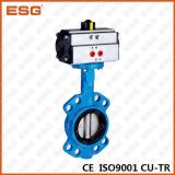 Válvula de borboleta pneumática de Esg