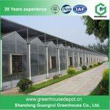 PC landwirtschaftliches grünes Haus-Polycarbonat PC Blatt-Gewächshaus