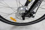 Signora elettrica Bike di colore spazzolato e doppio dell'alluminio
