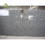 Spray White Granite Slabs for Big Sales
