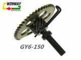 Parte del motociclo Ww-9773, Gy6 --Assemblea posteriore della ruota dentata di 150cc Idie,