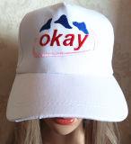 高品質のヨーロッパの刺繍された帽子(S-1076)