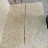 内部のタイルの磨かれた明るいベージュ大理石