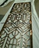 Het Scherm van het roestvrij staal voor de Decoratie van het Huis