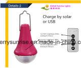 Lampe solaire portative portable 9 Watt Mini kits d'éclairage solaire avec panneau solaire avec chargeur USB