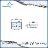 Керамический тазик шкафа и раковина тщеты верхняя (ACB2055)