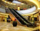 Types d'intérieur économiques extérieurs escalator du meilleur achat de Vvvf résidentiel