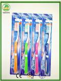 Vendite calde forte Hanldes con la marca adulta di Onix del toothbrush della linguetta