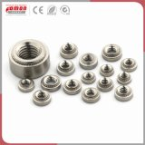 Customized Round Stainless Steel Arm Nuts Cage