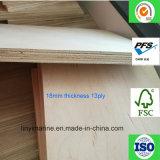 Madera contrachapada 18m m del grado de los muebles de la base del álamo de la madera contrachapada del arce