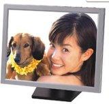 17''Monitor LCD TFT (SC-TV170)