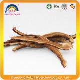 Tranches de champignons Red Reishi organiques Tranche de Ganoderma Lucidum
