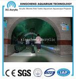 Proyecto de acrílico curvado material de acrílico modificado para requisitos particulares del acuario de la hoja