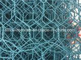 Sailin PVC 입히는 6각형 철사 그물세공
