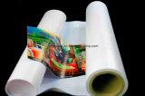 Fuori del materiale solvibile di stampa di Digitahi del getto di inchiostro del Eco-Solvente della doppia chiaro parteggiato del palo della pubblicità della bandierina del PVC bandiera della flessione esterno