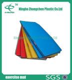 Le couvre-tapis en caoutchouc de plancher de sports respectueux de l'environnement folâtre le couvre-tapis en caoutchouc de plancher