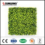 Puntos de venta Artificial Natural Colgando pantalla de pared con SGS