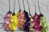 집으로 인공 꽃 나방 난초를 꾸미기 판매하는 2017hot