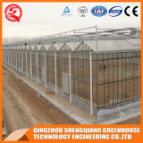 판매를 위한 상업적인 Prefabricated 정원 유리제 온실