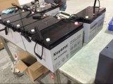 Type d'acide de plomb 12V100ah de batterie profonde de cycle de gel pour le système solaire