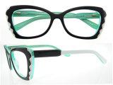 L'occhio incornicia i vetri di lettura degli occhiali della Cina di vetro ottici